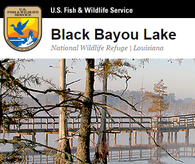 Click here to go to the USF&W web site for more info about Black Bayou Lake NWR