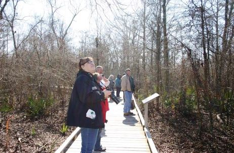 Nature Trail at Black Bayou Lake NWR Monroe Louisiana